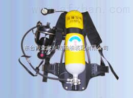 呼吸器 RHZK/5l空气呼吸器CCS产地