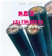 国标天津津猫CEFR电缆/CEFR船缆/CEFR橡套电缆