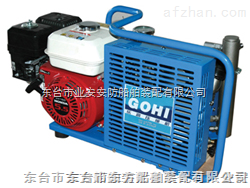 呼吸器充气泵 充气泵CCS认证厂家