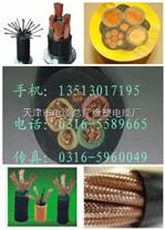 国标-铠装通信电缆