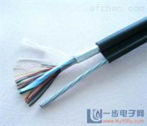 ZR-DJF46PGP22阻燃高温计算机屏蔽电缆(污水处理)(淮安电缆)