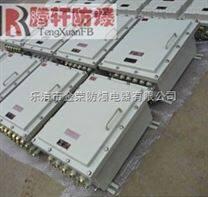 BXK-T现场防爆控制操作箱
