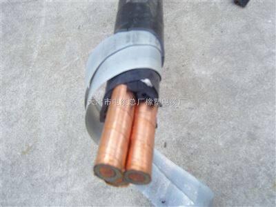 YJV22 YJV23交联电力电缆厂家价格