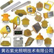 GB8035工厂车间用LED防爆灯厂家-【紫光GB8035】