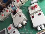 BDZ52-32/3L 防爆漏电开关