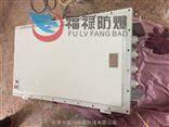BJX-TBJX-T 厂家直销防爆接线箱