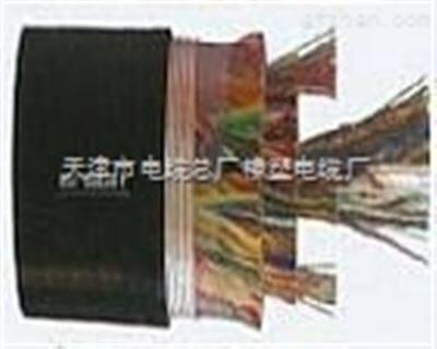 HYA-200*2*0.5通信电缆 HYA300*2*0.6通信电缆