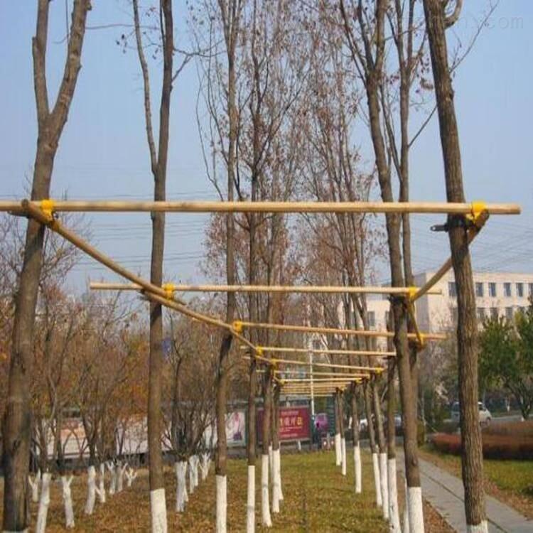 树木支撑杆 四角树木支架优惠促销