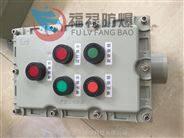 BXK 就地/現場防爆按鈕開關操作箱