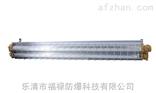 LED-2*20W隔爆型防爆荧光灯