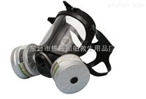 供应双滤式柱形防毒面具 双滤合防毒面罩