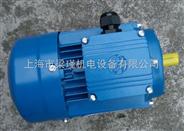 中研紫光电机,0.12KW三相异步电动机
