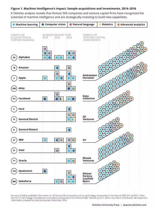 大脑模型结构图及功能分布